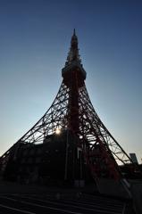 早朝東京タワー