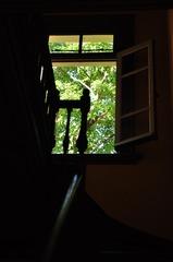 窓の向こう・・