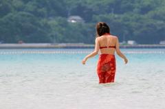 ♪ Summer Dream
