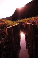 命を繋ぐ水路