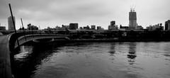 隅田川曇景
