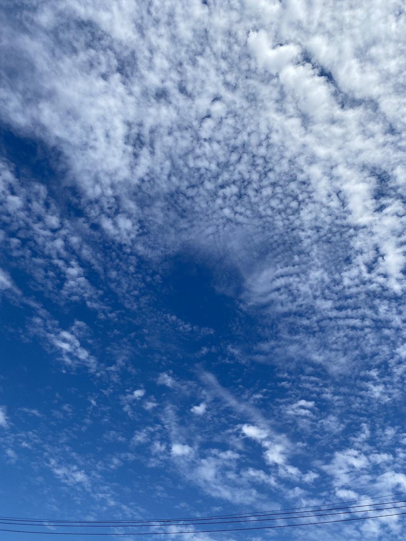 青い空は元気をくれる。