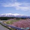 東北の春_鳥海山1