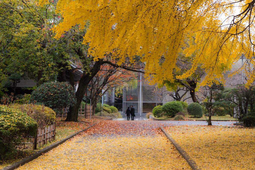 東京国立博物館の秋