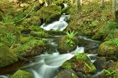 鏡沼からの渓流