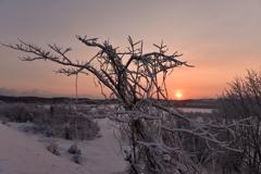 厳冬の夜明け