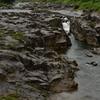 奇岩連なる厳美渓