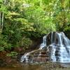 深緑の不動の滝