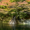 薬研渓流_滝と紅葉