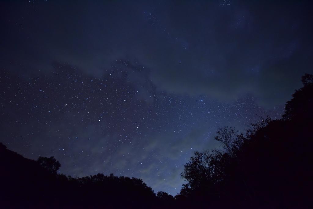 流れ星、み~つけた