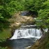 深緑の川内大滝
