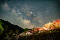 花桃+天の川