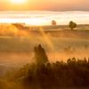 朝霧と光。