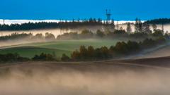 朝霧の丘。