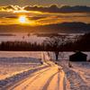 美瑛の畑、冬の夕暮れ。