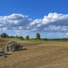 春の畑作業。