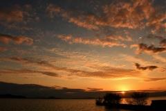 飛翔する夕景