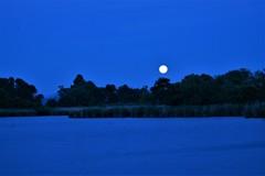 冷たい月の出