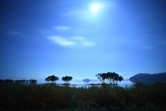 月照の湖北