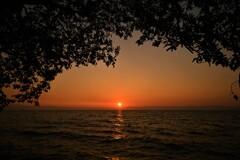 望郷の夕陽