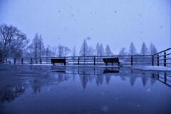 寒くて寂しいベンチ