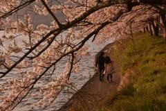 桜ロードの二人