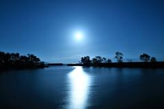 星降る月夜