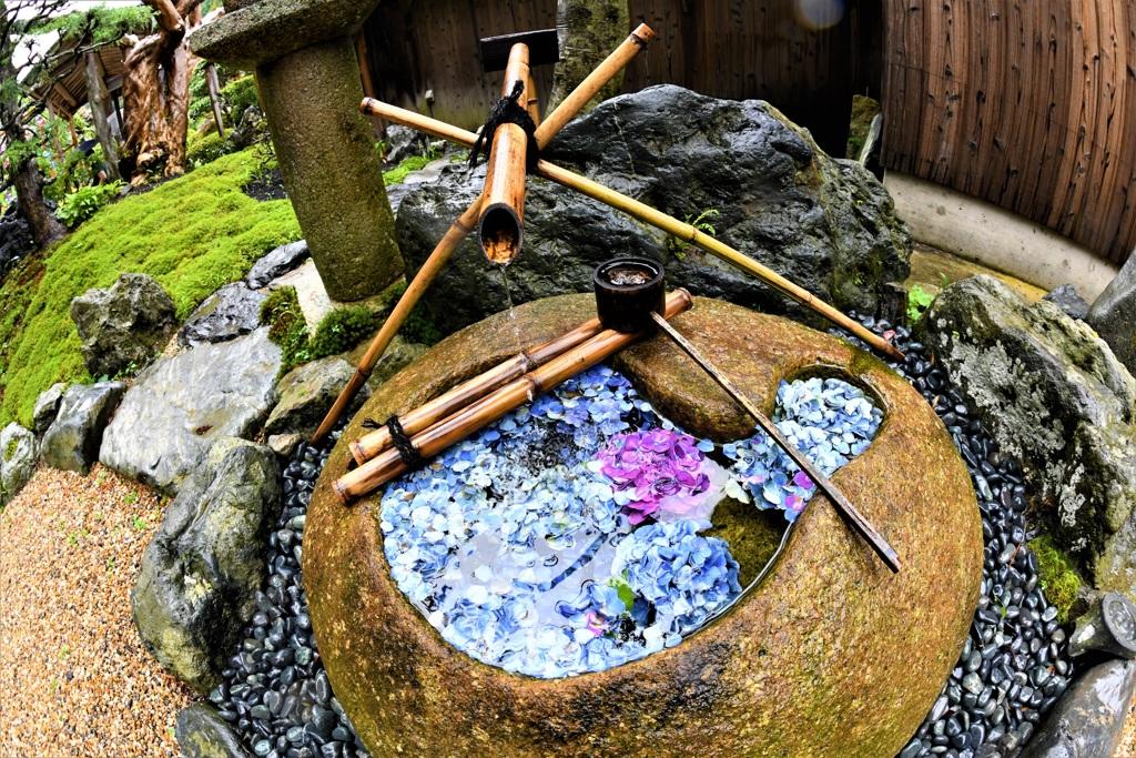 雨の日の手水鉢