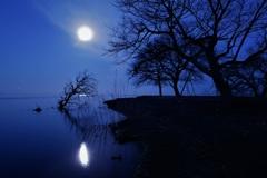 沈みゆく月明かり