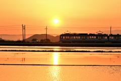 オレンジに溶ける琵琶湖ブルー