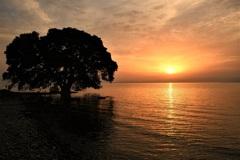 雲の隙間の夕陽