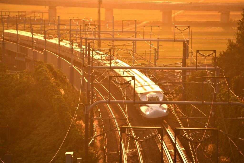 染まる新幹線