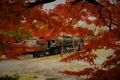錆びたSLと紅葉