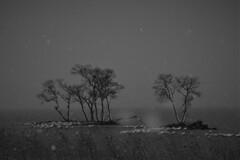 雪景色の湖北