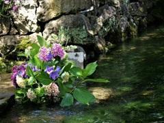 清流の生け花
