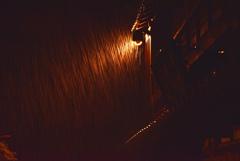 いつか夜の雨が