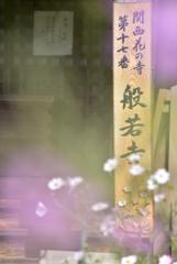 関西花の寺