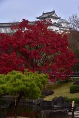 姫路城を臨む