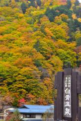 秋の白骨温泉