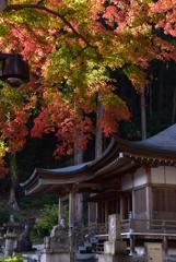 御影堂の秋