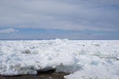 北海道野付半島の流氷。