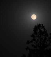 お月さまとPM2.5