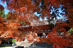 神護寺の秋
