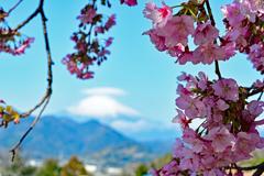 もう直ぐ春