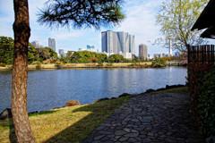 松の御茶屋から潮入の池 浜離宮恩賜庭園にて