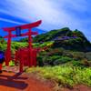 海に向かって123本目の鳥居 (長門市 元乃隅稲成神社 )