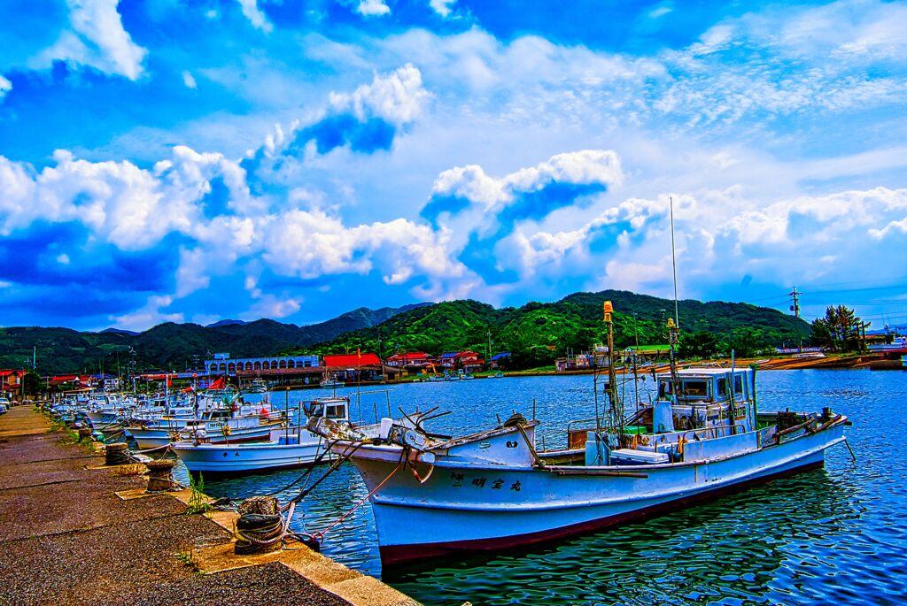 春陽の大井漁港①(萩市)