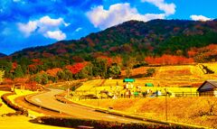 西陽に紅く染まる陶芸の村公園 (山口県 萩市)