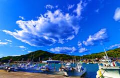 秋晴れの奈古漁港 (山口県 阿武町 )