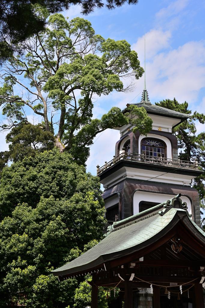 蝉時雨の尾山神社